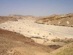 The Wadi Nachal Paran, Israel