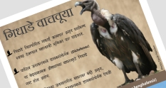 This poster warns about the dangers of vulture population decline in India.