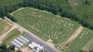 The Corn Maze at the Connors Farm near Danvers, MA