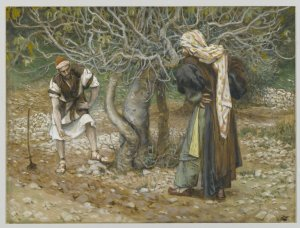 The Vinedresser and the Fig Tree, 1886-1894, James Tissot