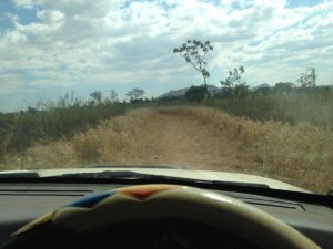 When I die, and you get around to putting together those photo collages, I hope that one of them will be of roads I've driven.  Here, I'm behind the wheel of Menes Makuluni's pick up truck, which he graciously lent us when the first two transport options for the day fell through.